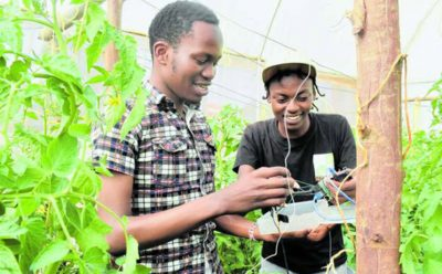Kenya: New Cutting-Edge Technologies to Redefine Farming in This Decade