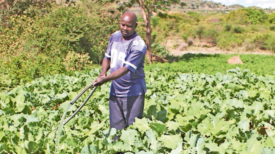 Water harvesting, use of irrigation key to all-year-round food production